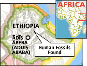 Рисунок взят с сайтаhttp://news.nationalgeographic.com/news/2001/07/0712_ethiopianbones.html